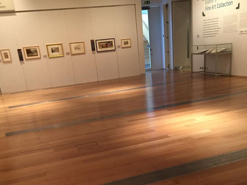 Prime Oak in the Royal Albert Museum Exeter