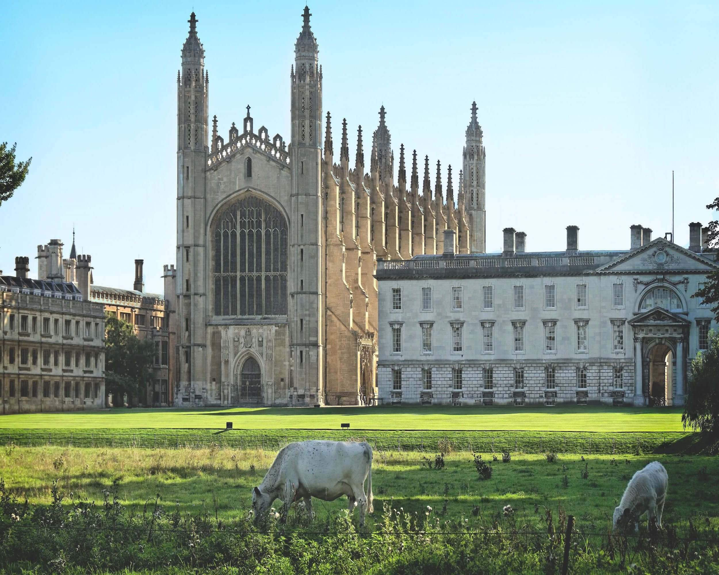 Kings College Cambridge   Case Study