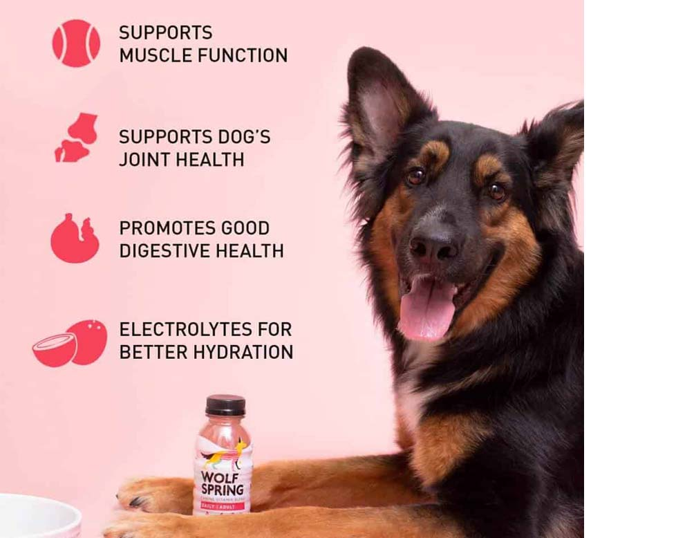 Wolf Spring Canine Vitamin Blend