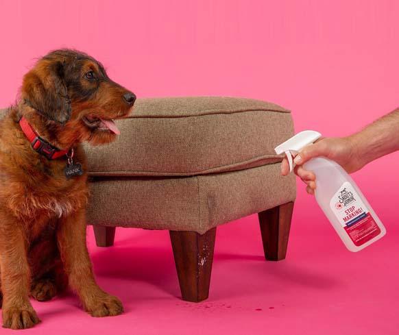 Stop Marking! Preventative Spray for Dogs